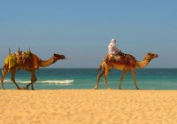 Holiday in Morocco-dream vacation in Morocco-travel guide