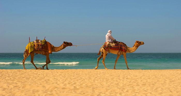 main_morocco
