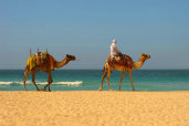 main_morocco-171x114