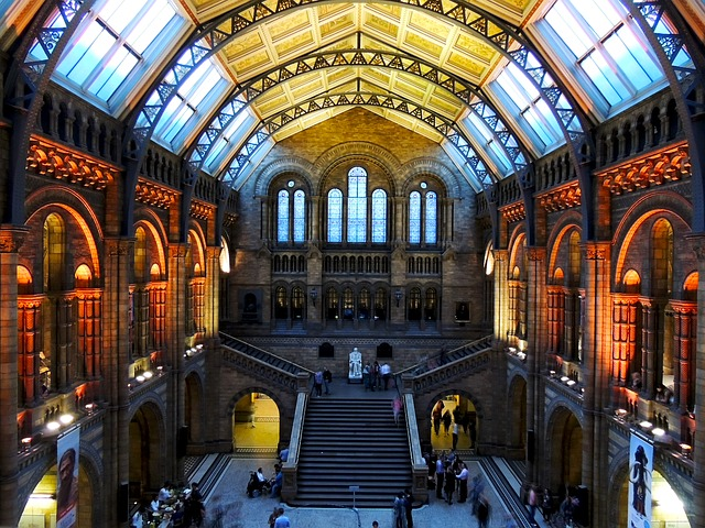 natural-history-museum-545186_640