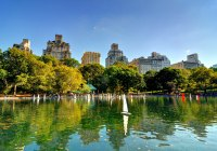 7 ideas what to do in Central Park, NYC